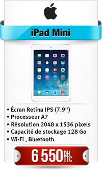 Mini-iPad avec Ecran Retina Wi-Fi 128 Go